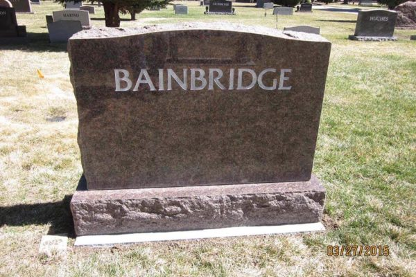 Bainbridge back